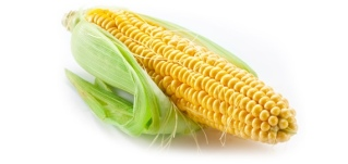 corn_husk_570.jpg